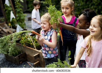 Group of Children are in a Field Trips