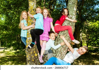 Group children sitting on a tree
