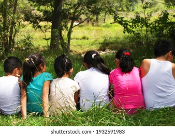 A group of child's sitting together backwards in a line and enjoying his childhood outside in the nature