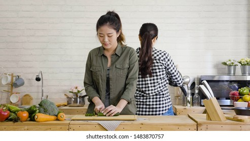 group of chinese women friends cooking together in modern apartment. young girl cutting vegetable on wooden board on kitchen island table while roommate in back frying on stove with hot pan indoors