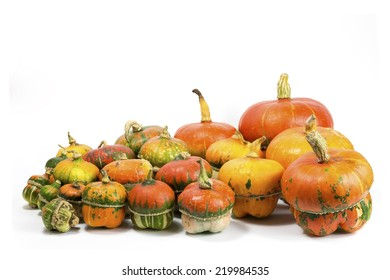 A group of colorful decorative pumpkins on white background