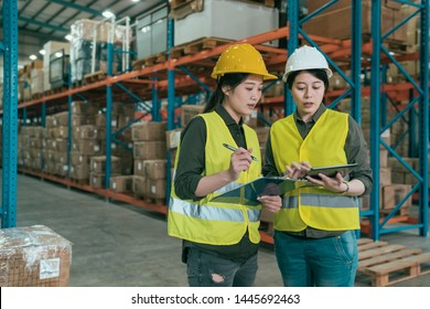 group of concentrated female workers using digital tablet in warehouse. two girl employees in helmet and safety vest discussing how to work in large stockroom. partners teamwork lifestyle concept.