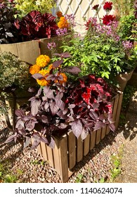 Group of different plants and flowers in pots and wooden boxes on gravel grund against white wall.
