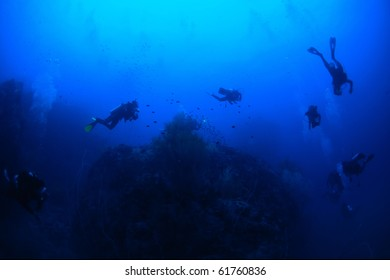 A group of diver and dive leader is swimming around