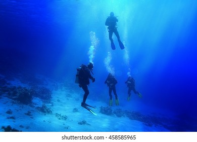 group of divers passing exams open water