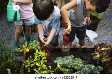 Group of Diverse Kids Learning Environment at Farm