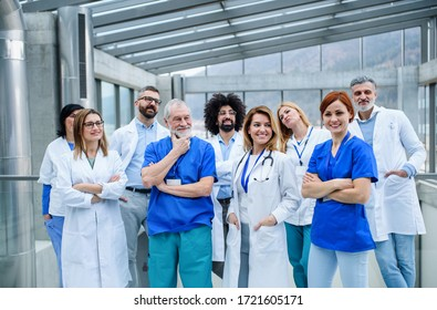 Group of doctors standing on conference, portrait of medical team.