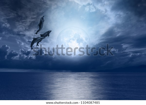 """Group of dolphins jumping out of the water with night sky, new moon in the clouds """"Elements of this image furnished by NASA"""