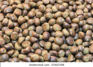 group of edible chestnuts.