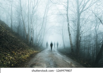 A group of eerie ghostly figures emerging from the fog on a spooky forest  road in winter. With a high contrast photoshop edit.