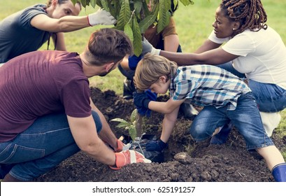 Group of environmental conservation people planting together