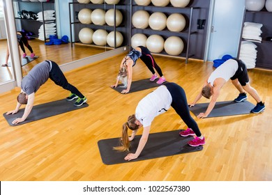 Group exercising body flexibility and balance at fitness gym