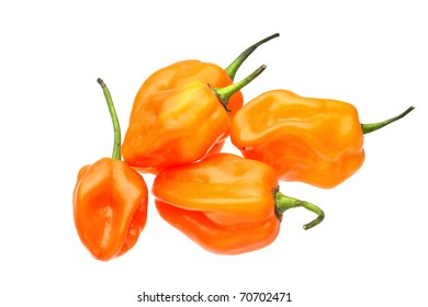Group of extremely hot habanero peppers.