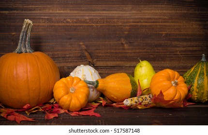 A group of fall or autumn decorations with pumpkins, leaves, gourds, corn and fruit
