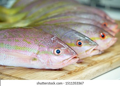 Group of fish aligned on kitchen wooden board, Yellowtail snappers close up