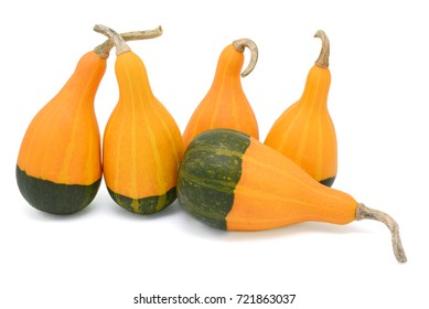 Group of five smooth-skinned, pear-shaped orange and green ornamental gourds, four upright, one flat, isolated on a white background