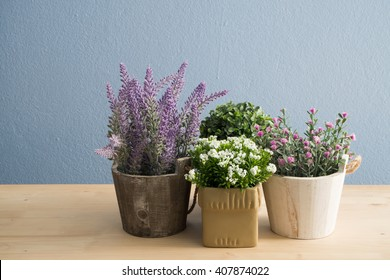 Group of flower pot on wood floor and blue concrete background.