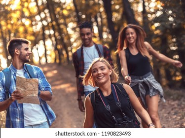 Group of four friends hiking together through a forest.