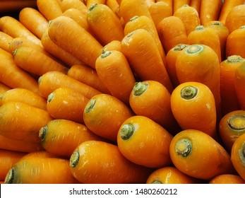 Group of fresh big carot, carot harvest.