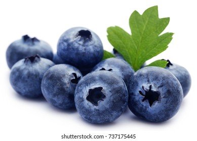 Group of fresh blueberries over white background