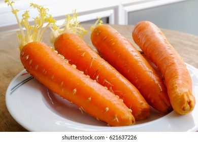 group of fresh carrots on white dish
