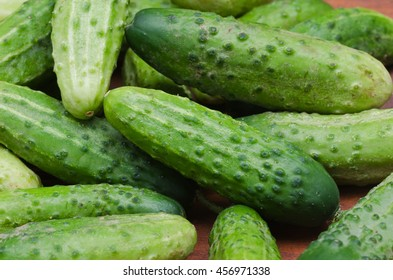 group of fresh cucumbers on table