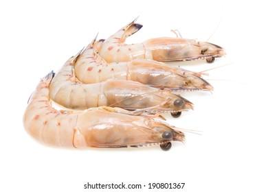 Group of  fresh king prawns isolated on white