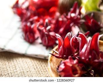 Group of fresh organic roselle flowers for healthy herbal drink