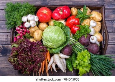 Group of fresh, raw vegetables on rustic wooden table tray. Selection includes carrot, potato, cucumber, tomato, cabbage, lettuce, beetroot, onion, garlic, radish, dill and parsley. Top view, close up