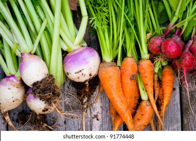 A group of fresh, root vegetables.