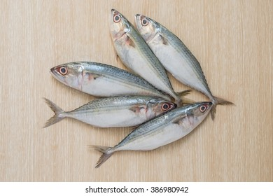 Group of Fresh sea fish on wooden table