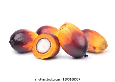Group of Freshly Oil Palm seed with cut in half isolated on white background.