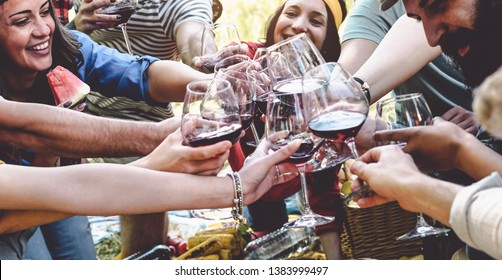 Group of friends cheering and toasting with red wine glasses at picnic party - Happy young people having fun drinking and eating together in the garden - Friendship, food and drink concept