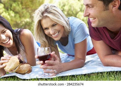Group Of Friends Enjoying Picnic Together