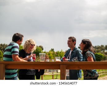 A group of friends having fun and toasting and drinking beer in a park on a holiday