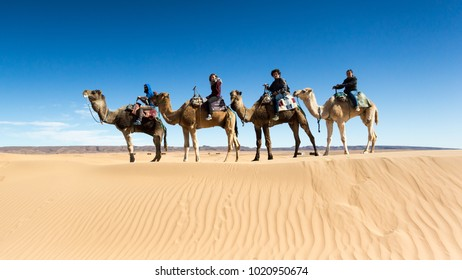 Group of friends having fun while riding camels in the Sahara desert, Morocco.