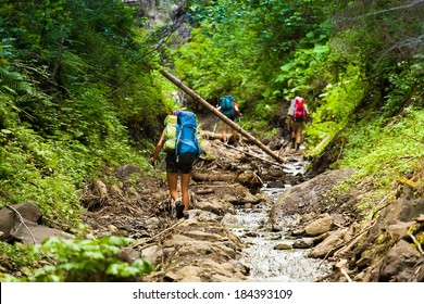 Group of Friends of hikers going up the mountain wood stream, overcoming obstacles.