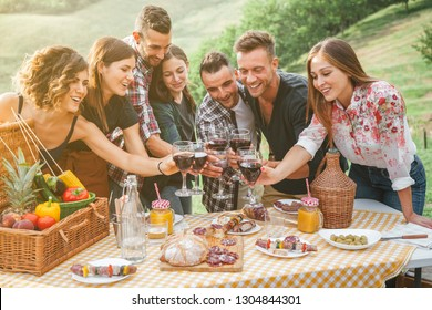 Group of friends making a toast during a barbecue in the countryside