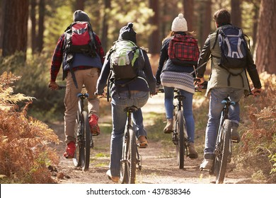 Group of friends on bikes in a forest, back view close up