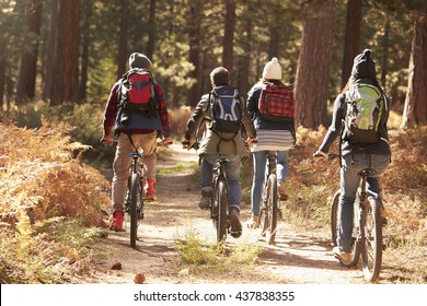 Group of friends riding bikes on a forest trail, back view