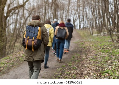 Group of friends walking with backpacks in spring forest from back. Backpackers hiking in the woods. Adventure, travel, tourism, active rest, hike and people friendship concept.