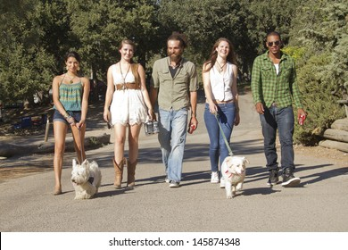 A group of friends walking their dogs down to the lake.