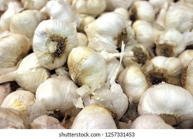 A group of garlic at market place
