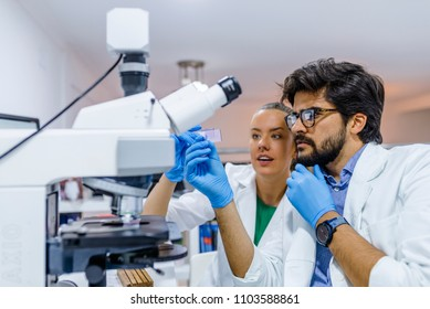 Group of Genetics engineering students working together in lab. Laboratory teamwork by college student indoors. Working in lab