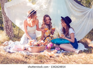 Group of girls friends making picnic outdoor. They have fun and drink cocktails.