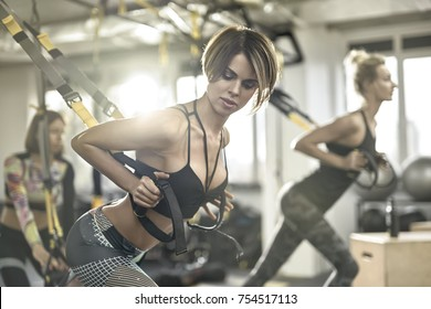 Group of girls is training with TRX straps in the gym on the windows background. They are wearing the sportswear. Horizontal.