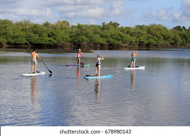 A group of good friends taking a paddle boarding lesson and eco tour in South Florida.