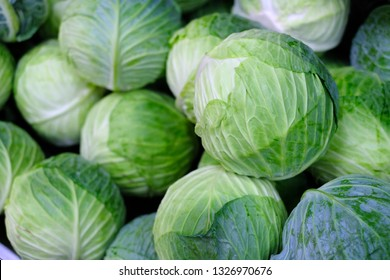 Group of green cabbages in a supermarket, Cabbage background, Fresh cabbage from farm field, a lot of cabbage at market place, Green cabbage for sale at a farmer's market stall, Healthy concept.