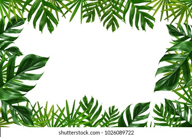 Group of green leaf frame on white