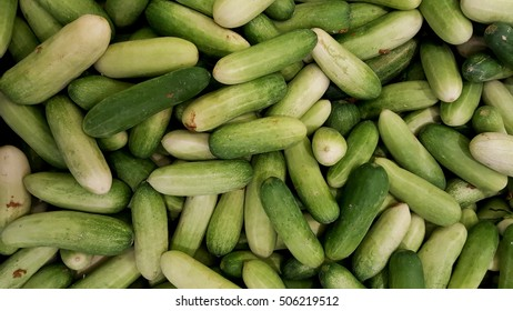 group of green small cucumbers in fresh market